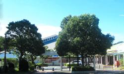 小山田桜台商店街