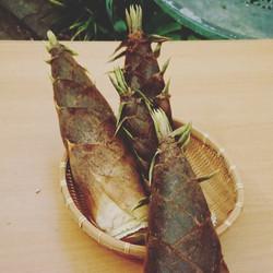 近隣の竹林で春はタケノコが楽しめる