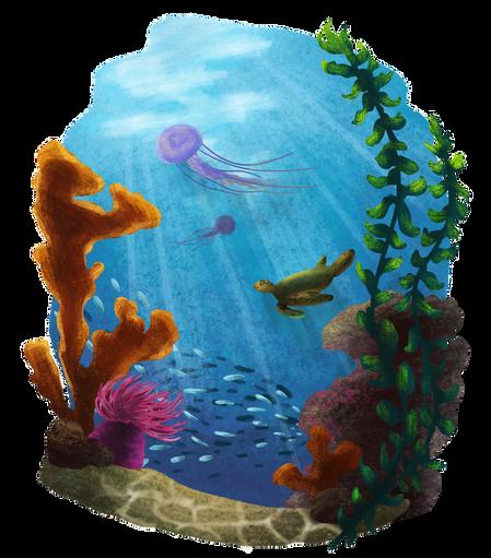 Ocean Bliss