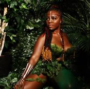 The Jungle Theme