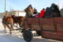 horse drawn wagon1.jpg