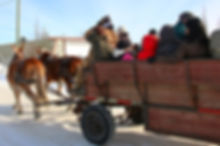 horse drawn wagon1.jpg