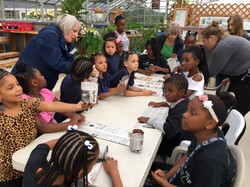 Solomon Hms Girl Scouts for Vision 2025 make recycled peat pots in greenhouse at Sandyvale