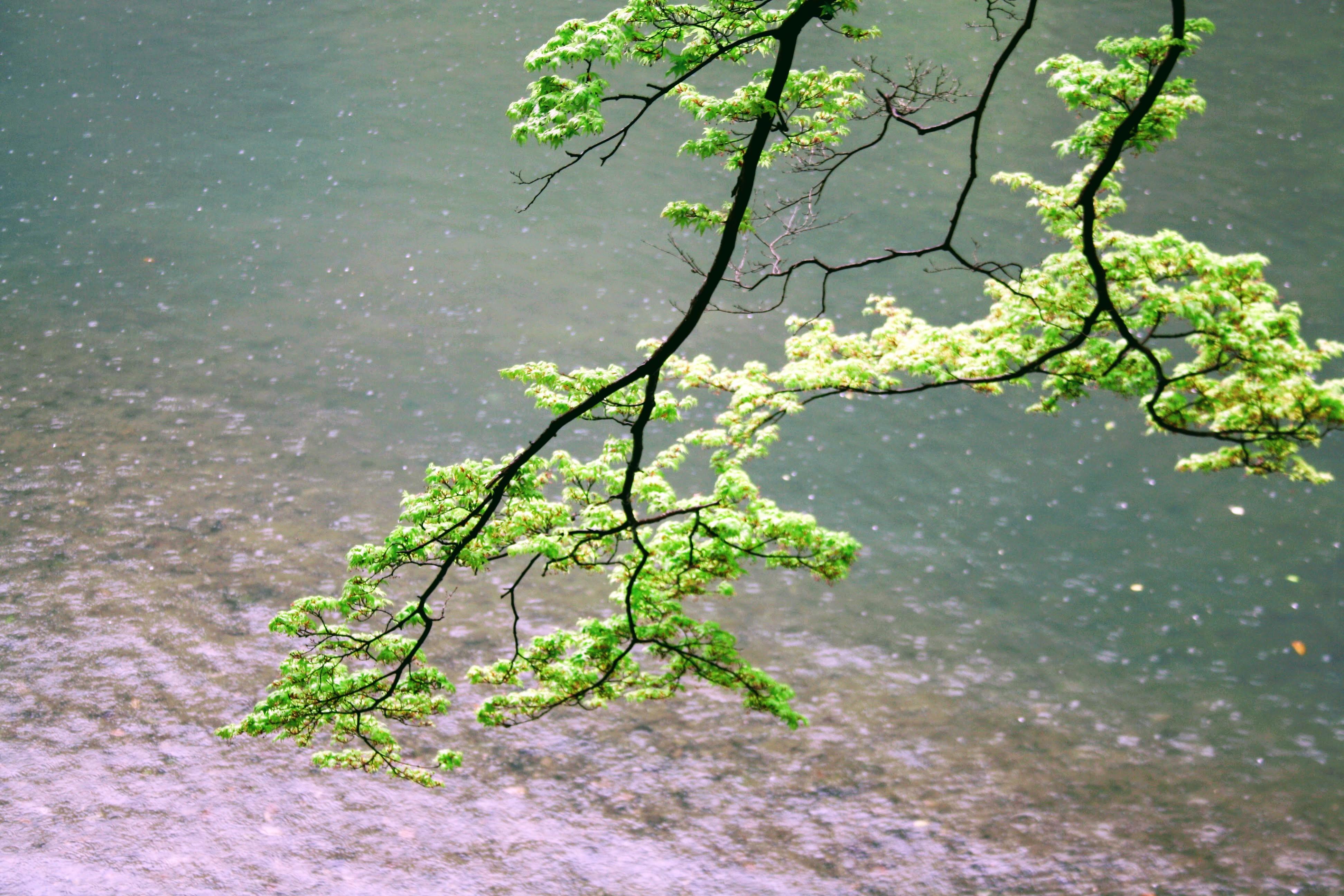 river-japan