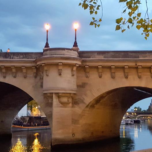 Lovelocks on the Seine