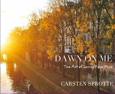 Cover of book Dawn on Me - Ile Saint Louis