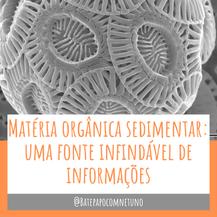 Matéria orgânica sedimentar: uma fonte infindável de informações - Parte 1