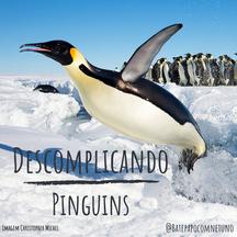 Pinguins - lentos na terra, velozes no mar
