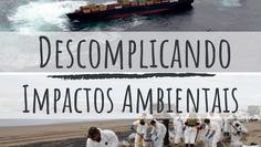 Impactos ambientais nos ecossistemas marinhos