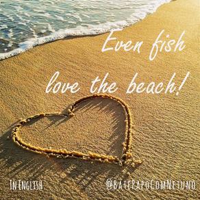 Even fish love the beach