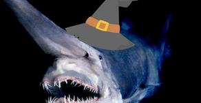 Halloween Under the Sea