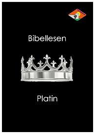 K09 Vorderseite Bibellesen Platin.jpg