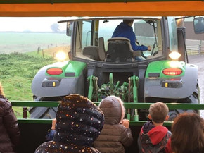 Kids love animals - in half term, see cows milking, feeding, & tractor rides.