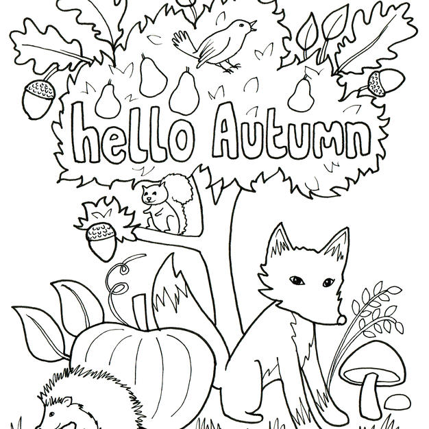 Hello Autumn  - Rutland Artist Sally Renner creates colouring picture