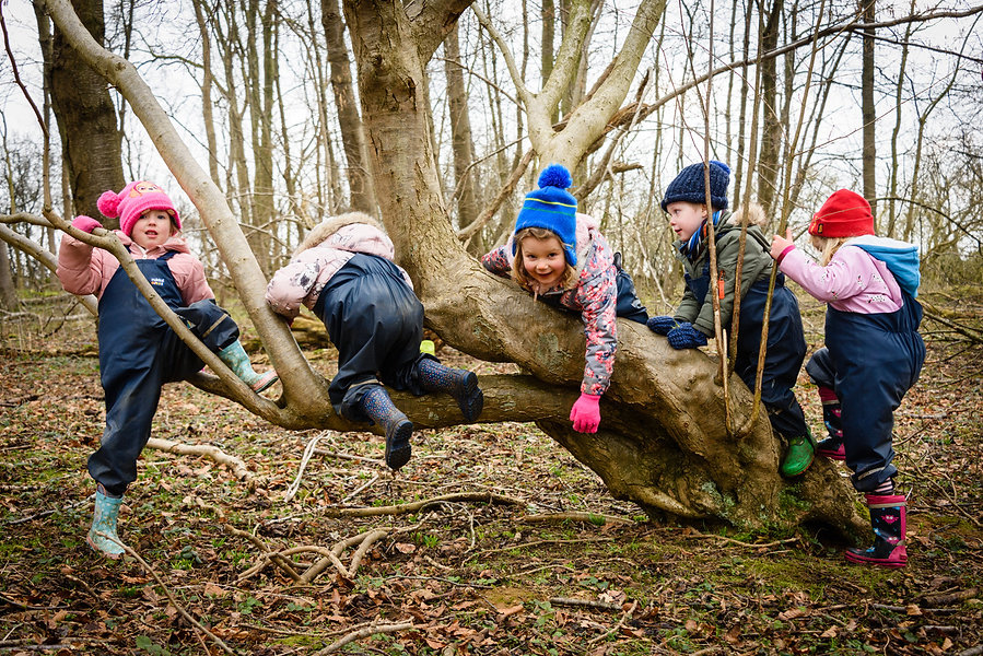 LL_ForestSchool_ElliDeanPhoto_123.jpeg