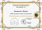 Кондратьев Михаил.png