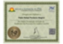 Diploma Facilitador de Procesos de Cambio con PNL