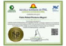 Certificación Internacional en Coaching con PNL