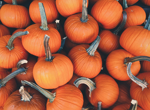 The Pumpkin Profiles: Why This Dietitian Thinks They're Underrated (BONUS RECIPE)