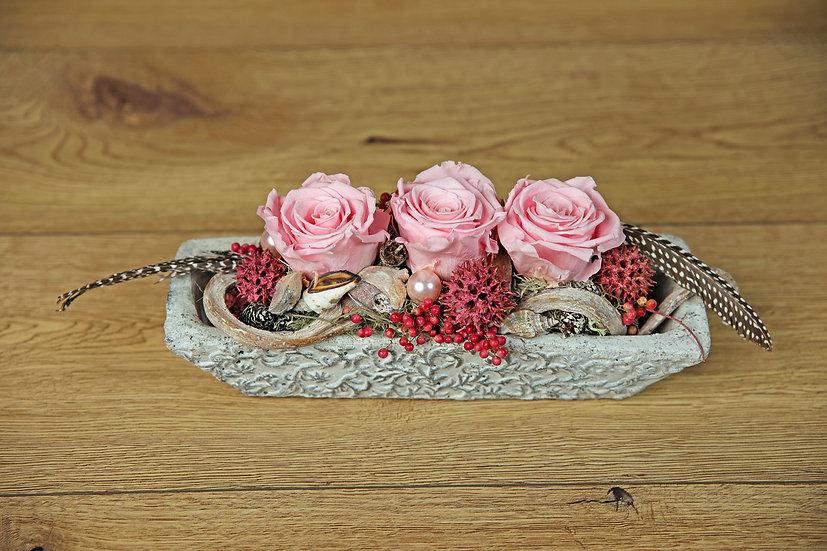 Stabilisierte Rosen 15-04