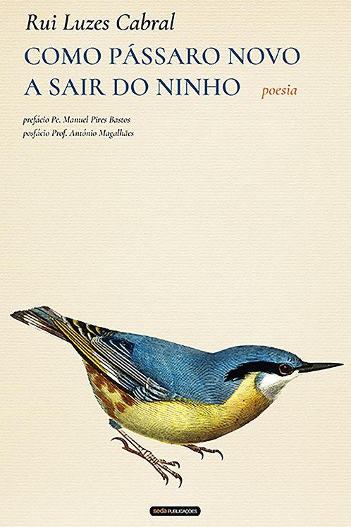 Como pássaro novo a sair do ninho