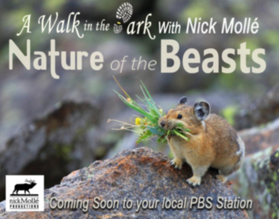 natueofthebeastspostcardfrontwebsite.jpg