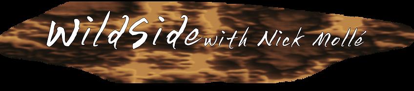 Wildside only Logo key2.png