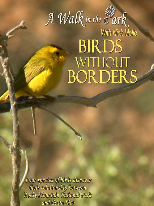 A Walk in the Park: BIRDS WITHOUT BORDERS - DVD