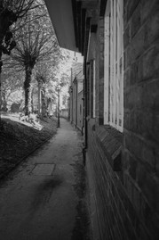 path in Warwick.jpg