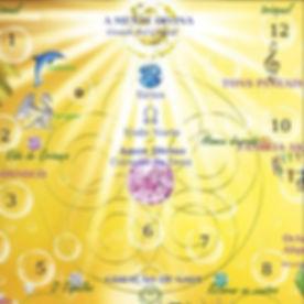 Curso-Quantico-Portal-Sirius.jpg