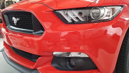 XPEL Clear Mask 2015 Ford Mustang GT