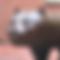スクリーンショット 2019-12-16 13.47.45.png