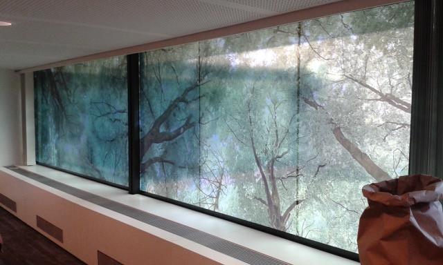 Windows Decoration