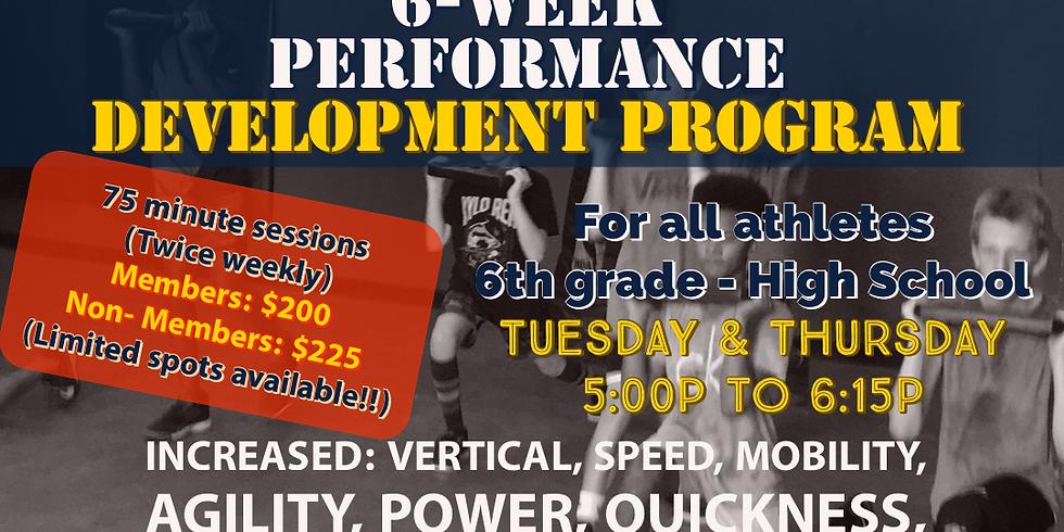 Performance Development Program