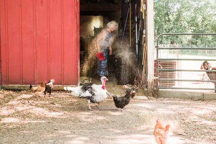 20210618. Squash Blossom Farm_Resized-16.jpg