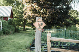 20210618. Squash Blossom Farm_Resized-150.jpg