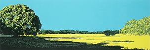 Oklahoma Landscape: Before