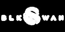 BLK SWAN Logo White H.png