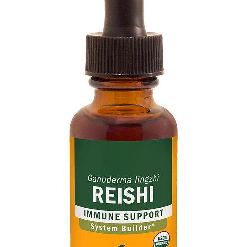 Reishi Mushroom Tincture