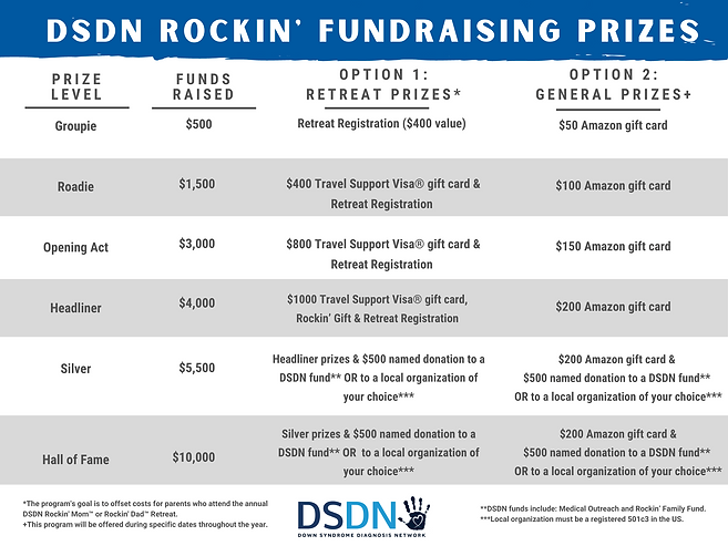 2022 DSDN Fundraising Prizes.png
