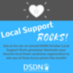 2018 local support rocks.png