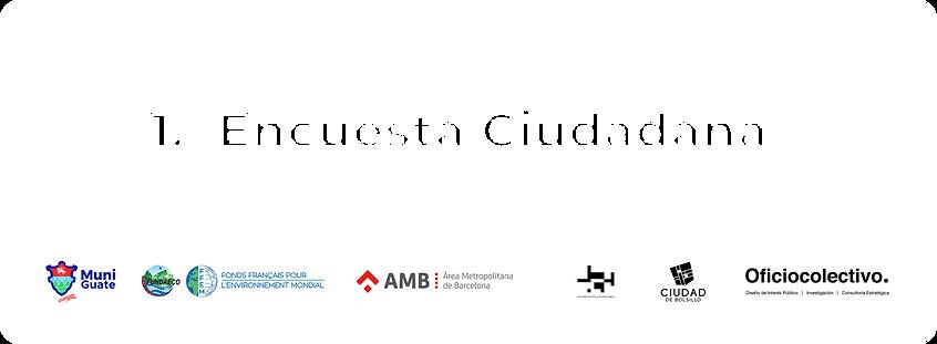 Etiqueta_web_titulo_encuesta_2.png