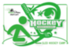 DreamsHockeyCamp2019_1000web.jpg