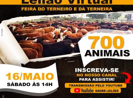 Feira do Terneiro e da Terneira - Curitibanos SC ao vivo