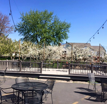The patio in May