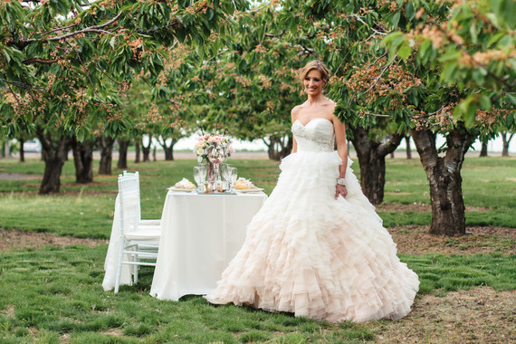 bride and seating in orchard.jpg