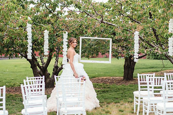 chairs in orchard seating.jpg