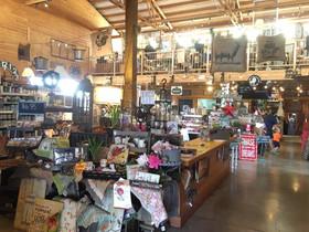 inside whole store.jpg
