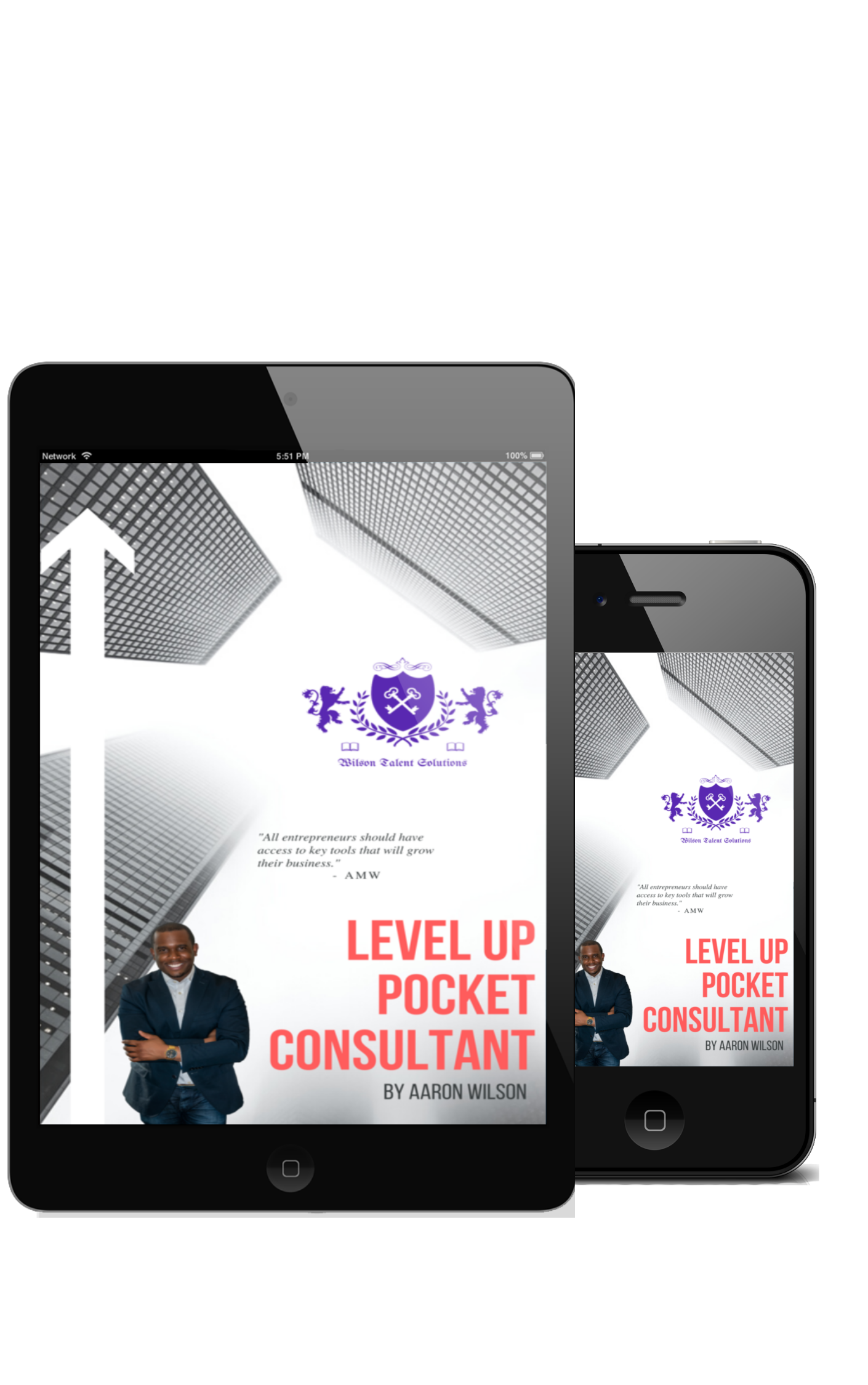Level Up Pocket Consultant How To Take Any Business To New Heights Ebook Wilson Talent Soluti