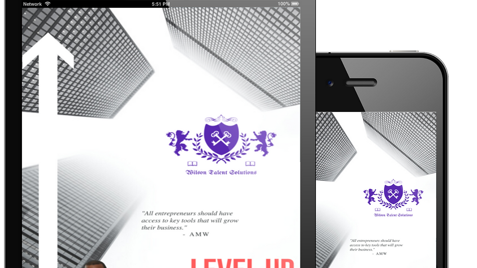 Level Up Pocket Consultant: How To Take Any Business To New Heights (eBook)
